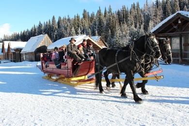 Enjoy sleigh rides, warm refreshments, delicious home baking in the Wendle House, decorated displays, shopping, carolling, and other seasonal activities.